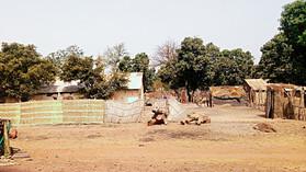 Kassoumay Casa Di Mansa: Plaidoyer pour la Casamance