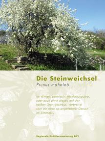 01_Steinweichsel_2.jpg