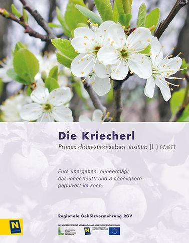 09_Kriecherl.jpg