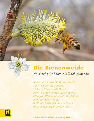 06_Bienenweide.jpg
