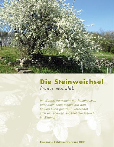 01_Steinweichsel.jpg