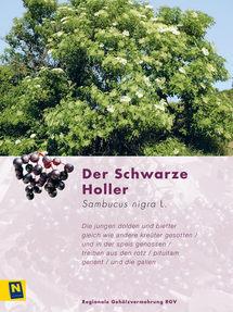 05_SchwarzerHoller_2.jpg
