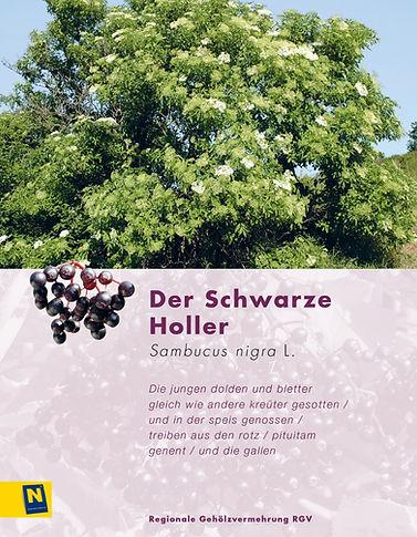 05_SchwarzerHoller.jpg