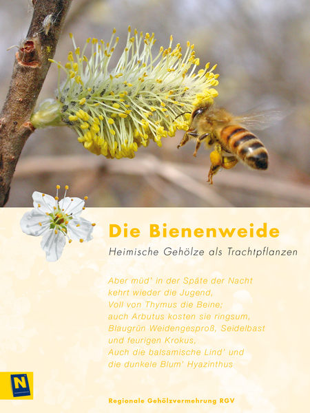 06_Bienenweide_2.jpg