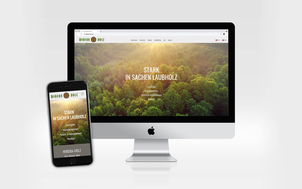 wibeba-website.jpg