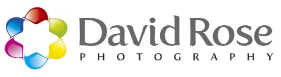 davidrose.png