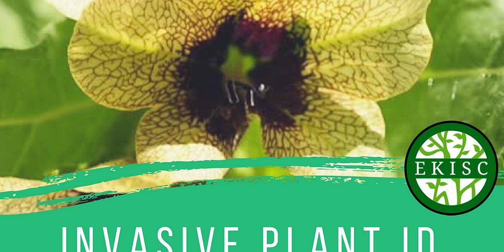 Invasive Species Plant ID Course - Invermere