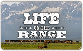 Life-On-The-Range.png