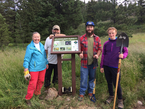 Cranbrook Community forest Sign installation