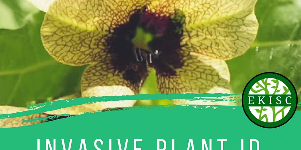 Invasive Species Plant ID Course - Cranbrook (1)