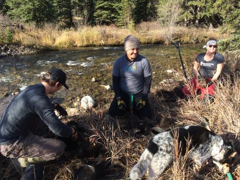 Elk River Alliance riverbank restoration