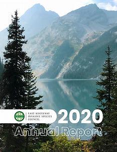 AnnualReport2020Cover.jpg