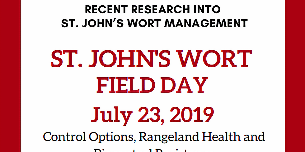 St. John's Wort Field Tour