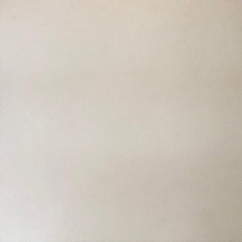 Pavimento gress porcellanato neutro 80x80