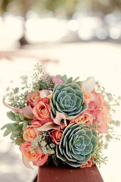 Bouquet Suculentas