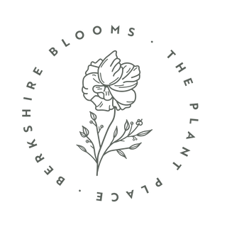 BB Logo Circle Green.png
