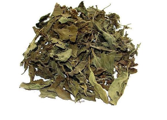 Albahaca hojas x1 kg