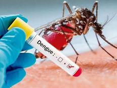 Dengue preocupa Pindamonhangaba.