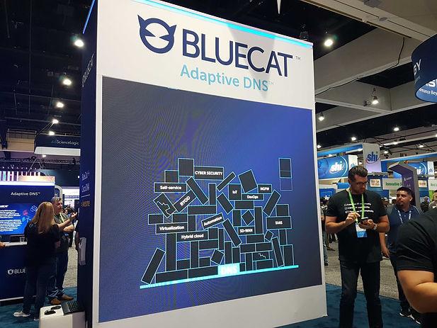 Bluecat Stand.jpg