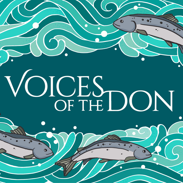 Voices of the don COVER.png