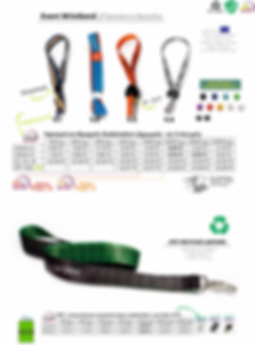 lanyards - offer.png