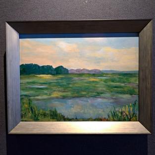Marsh Series