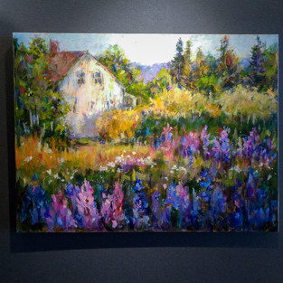 Cottage Lupines