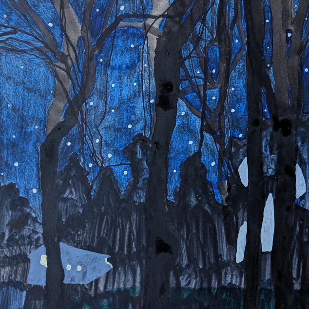 The Woods at Night