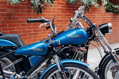 Lolana Motos Harley.jpg