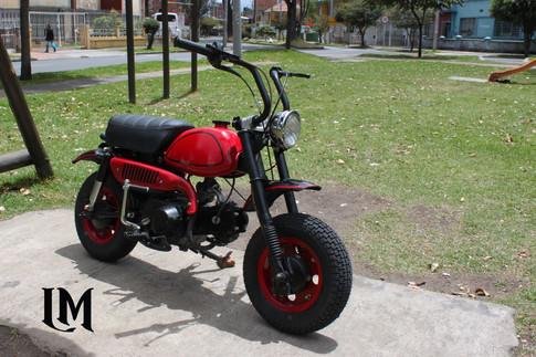 Mankey Bike By Lolana Motos copy.jpg