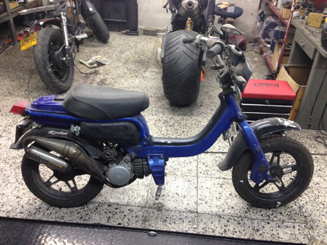 FZ50 Antes.png