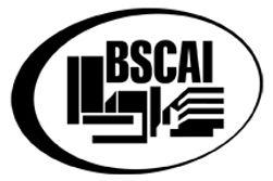 BSCAI_Logo(K)_Web.jpg