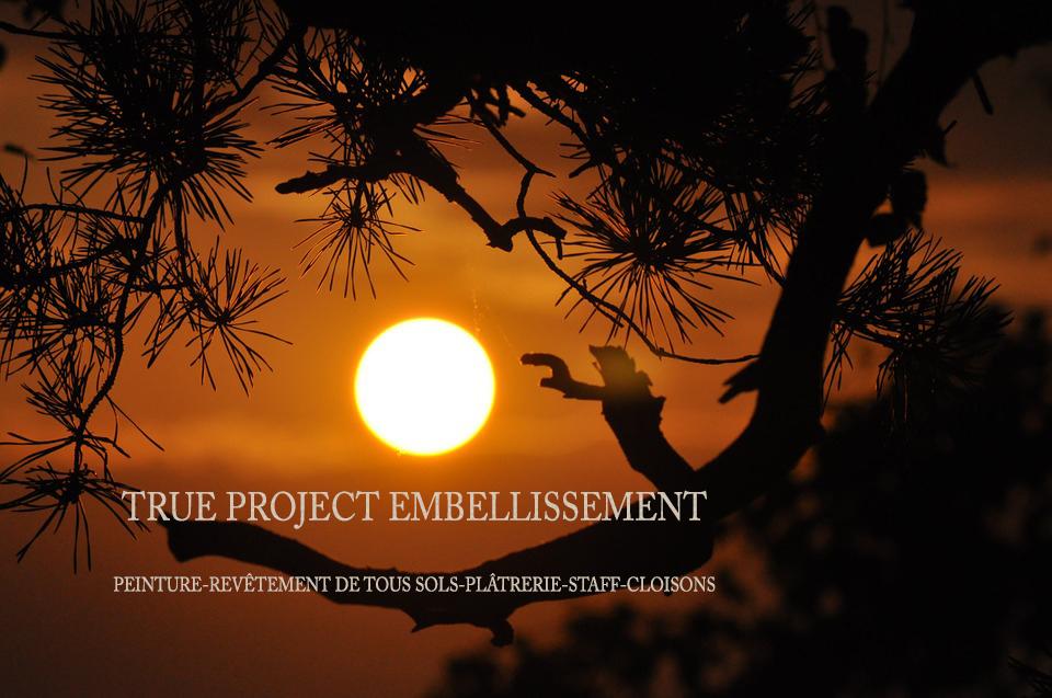 True Project Embellissement