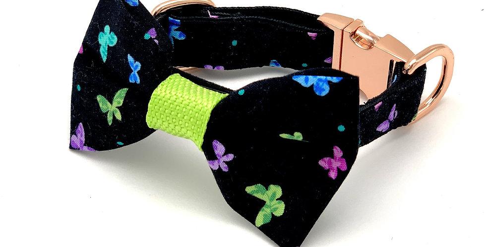 Butterflies Dog Collar & Bow Tie Set
