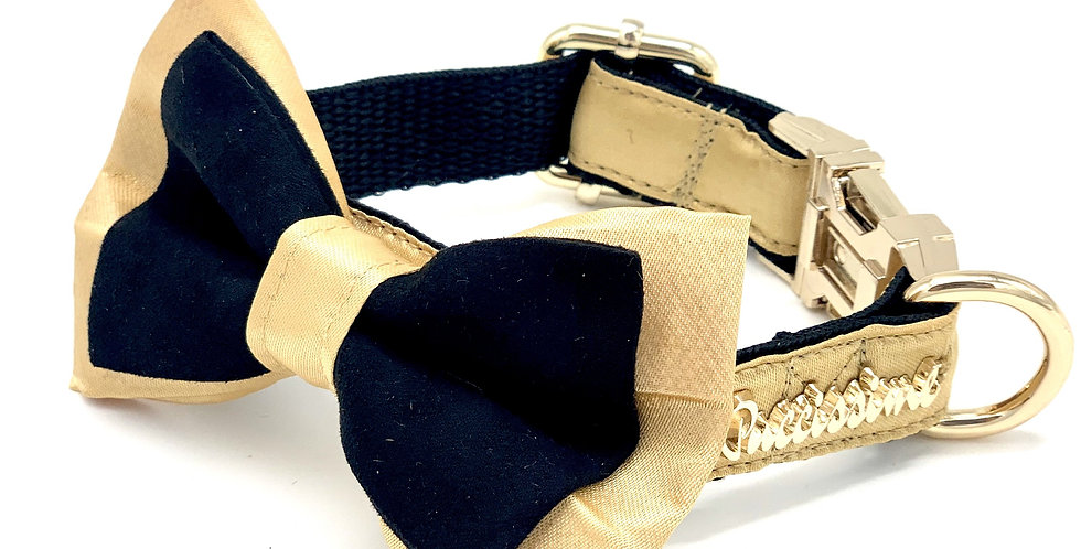 Gold and Suede Dog Collar & Bow Tie Set
