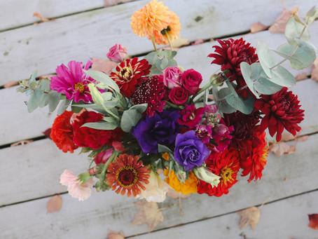 Fall Favorites – Delighting the Senses