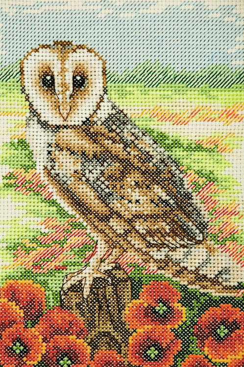 Counted Cross Stitch Kit - Anchor Owl