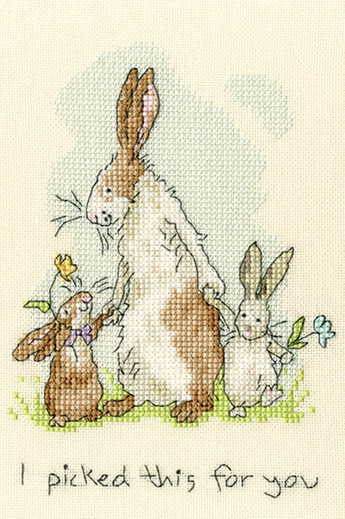 Cross Stitch Kit - I picked this for you