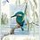 Thumbnail: Cross Stitch Kit  Kingfisher