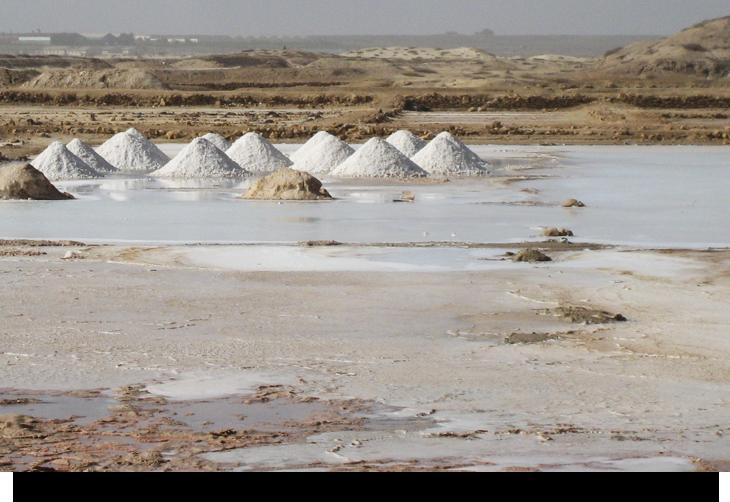 salt-scenery