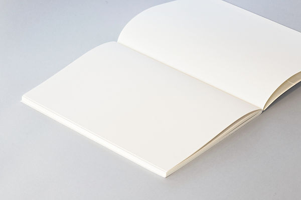 Révision de textes profesionnels, universitaires ; correction de la grammaire, de l'orthographe, de la syntaxe
