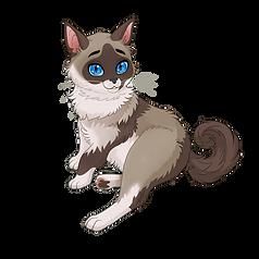 Siamese kitty named Trillian