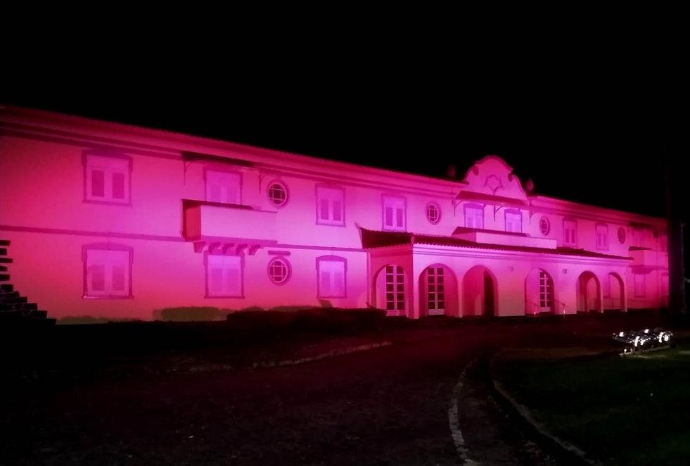 Rosa é a cor deste mês e da Fundação Aperam Acesita.jpeg