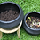 Thumbnail: Compostera Negra