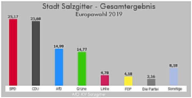 AfD Salzgitter