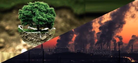 No hay capitalismo verde