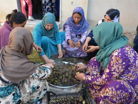 Rojava: crean cooperativas para fortalecer la economía de las mujeres
