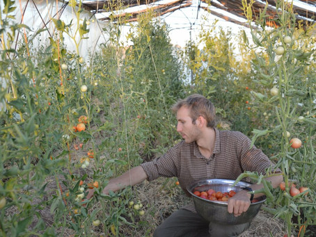 Activista del Make Rojava Green Again detenido por las fuerzas del KRG (KDP)