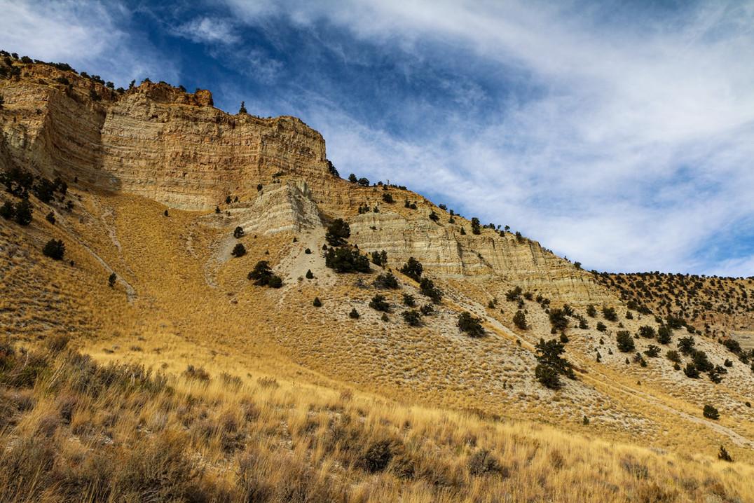 Indian Canyon 1