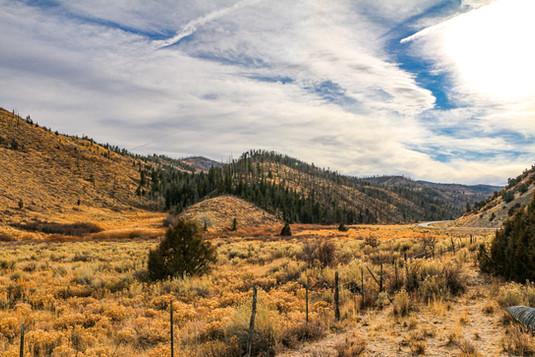 Indian Canyon 2